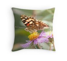 An American Painted Lady Butterfly 2 Throw Pillow