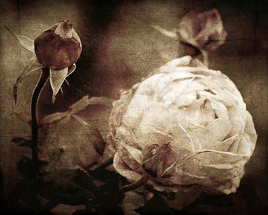 Vintage Memories by Trish Mistric