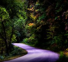 Road Less Traveled by Jigsawman