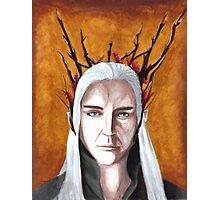 Wood Elf King Photographic Print