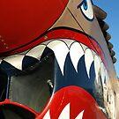 Warhawk Teeth by Jon  Johnson