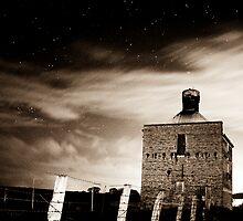 Chicory Kiln in high contrast sepia by sugarberry