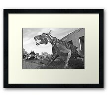 Princeton University Stadium Tigers Framed Print