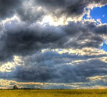 The Impending Storm by DavidHornchurch