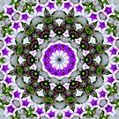 Kaleidoscope Collection by SMURFESQUE (aka Bernice Camlin) by Smurfesque