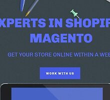 eCommerce Ninja by ecommerceninja