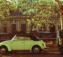 Vintage Car  by Sunil Bhardwaj
