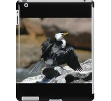 Cormorant @ Sculptures By The Sea 2011 iPad Case/Skin