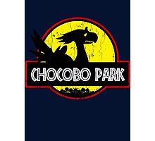 chocobo park Photographic Print