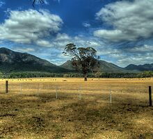 Of Drought and Flooding Rains - The Grampians - The HDR Experience by Philip Johnson