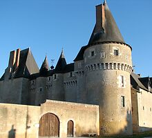 Chateau, France by ecotterell