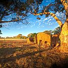 The Ruins - Red Creek Road, Hartley/Woodchester, South Australia by Mark Richards