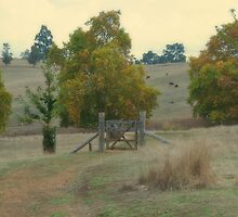 Autumn in the Valley by Elaine Teague