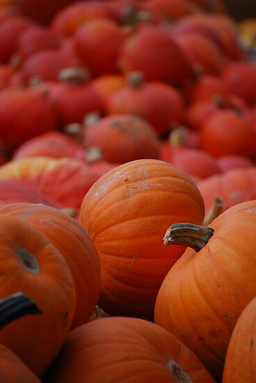 Flood of Pumpkins by Rowan  Lewgalon