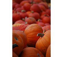 Flood of Pumpkins Photographic Print
