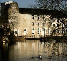 Mill on the Vonne by Pamela Jayne Smith
