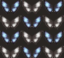 Butterfly pattern by melcsee