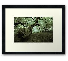 Deep in the woods....... Framed Print