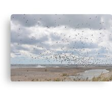 Rondeau Provincial Park - South Beach Metal Print