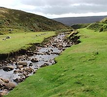dales beck high on the top by nightjar