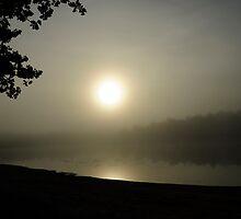 Foggy Morn by Paul Gitto