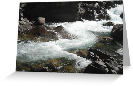 The River M by May Lattanzio