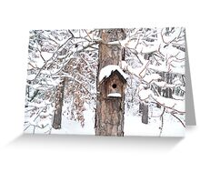 A Bird's Home Sweet Home Greeting Card