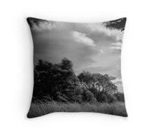 Did I say it was windy? Throw Pillow