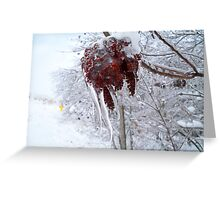 An Icy Grip Greeting Card