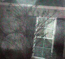 big orbs outside my house by kimbeaux1969