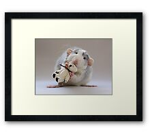 My bear :) Framed Print