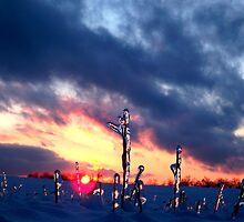 A Winter Sunset by Seth LaGrange