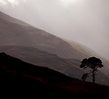 Glen Strathfarrar - In Awe by Kevin Skinner