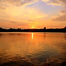 Golden Sunset by chris11979