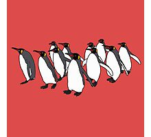 March of Penguins Photographic Print