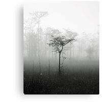 alone in the mist Canvas Print