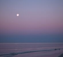 Stuck somewhere in-between the day and night by kathy s gillentine