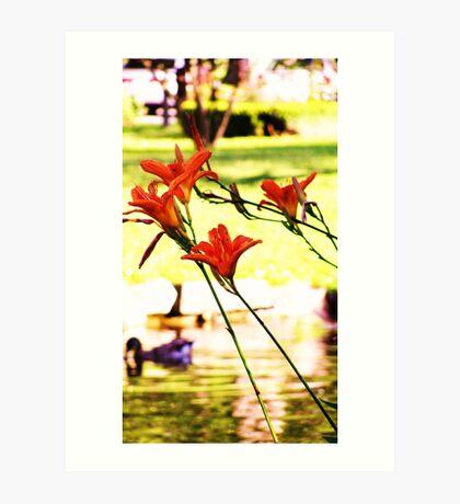 Flowers in the Park Art Print