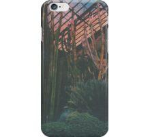 Cactus Life iPhone Case/Skin