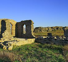 AN OLD ABBEY RUIN by andysax