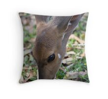 Female Bushbuck Close Up Throw Pillow