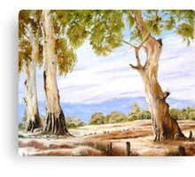 Warm Winters Day Canvas Print