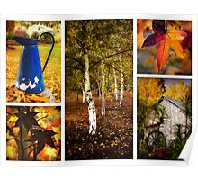 Wandering in autumn Poster
