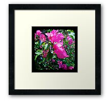 One for Today Framed Print