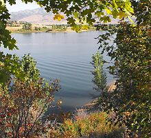 A View of Pine View Reservoir by Jan  Tribe