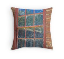 Cob-webbed Window, Monte Christo, Junee, NSW, Australia (HDR) Throw Pillow