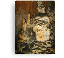 SORCERER FROM THE CAVE Canvas Print