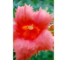 Trumpet Flower Abstract  Photographic Print