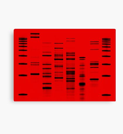 DNA Art Portrait - Firefly Canvas Print