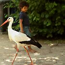 Girl and stork by steppeland